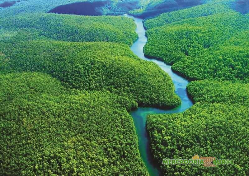 Àreas para compensação Ambiental a Venda Brasil