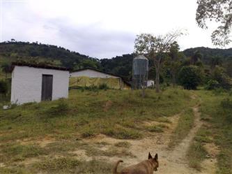 Vendo 1 Granja de 20.0000 Aves de Corte Belo Horizonte