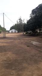 Fazenda de Eucalipto a venda de 1850 ha Norte de Minas Gerais