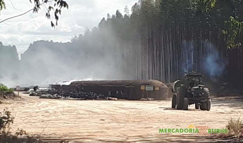 Fazenda de Eucalipto a venda com 1660 ha de Floresta no Norte de Minas