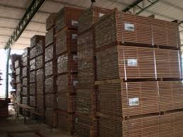Wood for sale in Brazil from Cumaru for Export