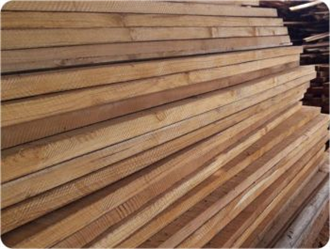 Wood for sale in Brazil by Teca for Export