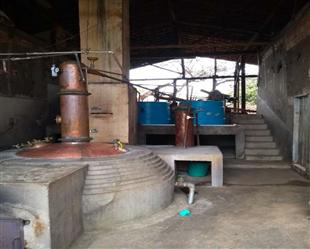 Fazenda a venda com Alambique em Minas Gerais tipo Exportação