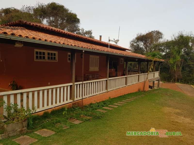 Vendo Fazenda de Gado de Corte e Eucalipto em Minas Gerais