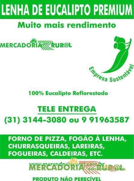 Lenha para Fogueira em Belo Horizonte