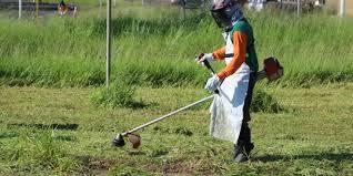 Limpeza de Lotes e Terrenos Baldios em Nova Lima